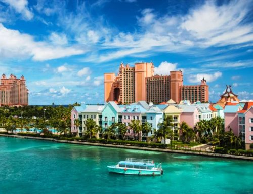 Looking for something fun to do in The Bahamas?